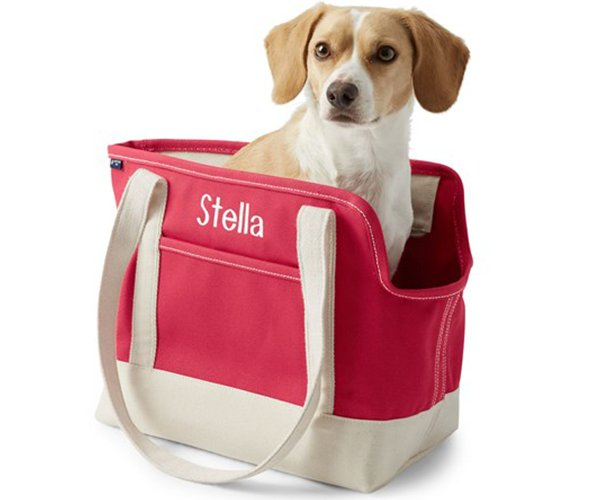 canvas-tote-pet-carrier.png