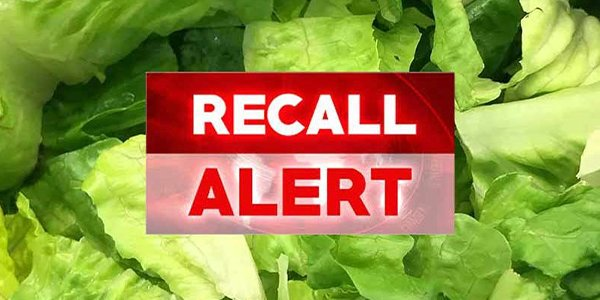lettuce recall 1.png
