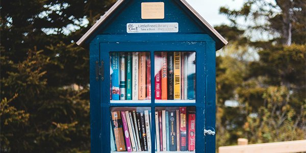 How to Host a Neighborhood Little Library.png