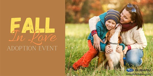 Fall In Love Adoption Event.png