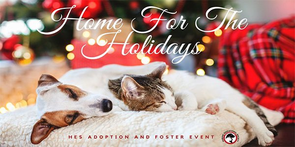 Home for The Holidays Adoption and Foster Event.png