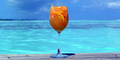 Tropical Cocktails.png