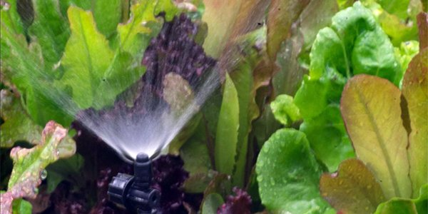 Home Irrigation System.png