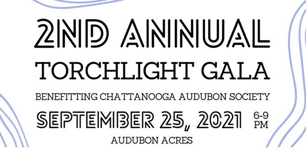 2nd Annual Torchlight Gala.png
