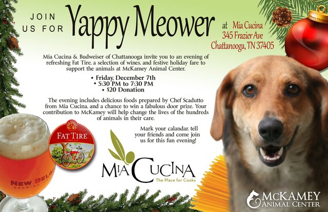 Yappy Meower At Mia Cucina
