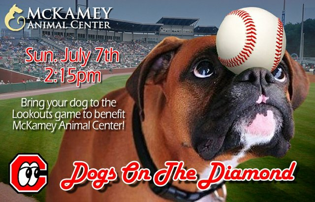 Dogs on the Diamond 2013