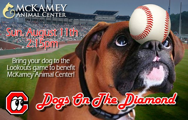 Dogs on the Diamond at the Chattanooga Lookouts August