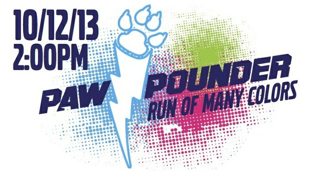 Paw Pounder Run of Many Colors