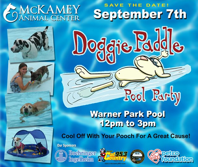 Doggie Paddle Pool Party