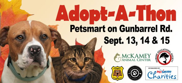 Fall In Love Adopt-A-Thon
