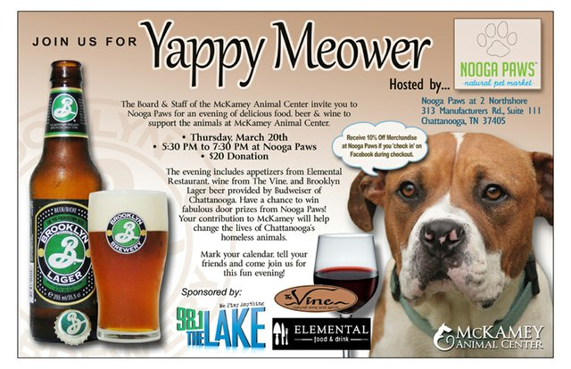 Yappy Meower at Nooga Paws