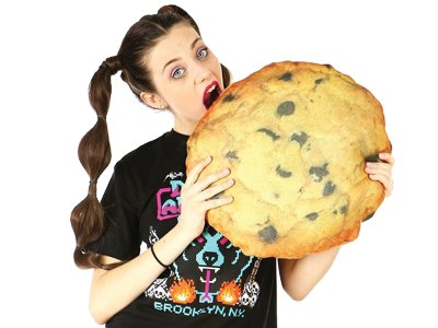 cookie pillow.png
